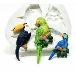 Molde de Silicone Passaros Papagaio Periquito Tucano